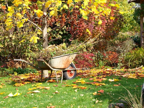 September Gardening Checklist