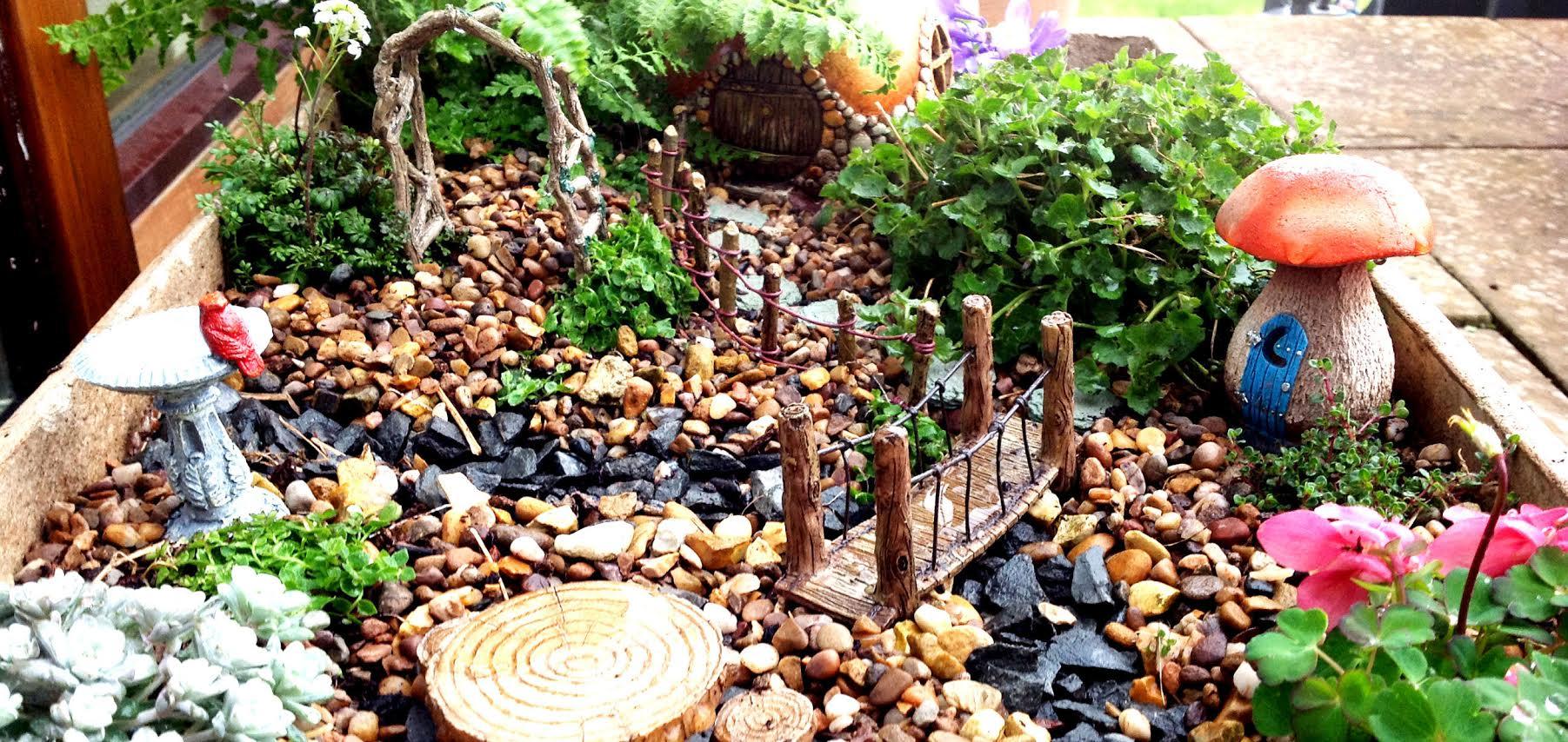 Fairytale Gardens Pentland Plants News