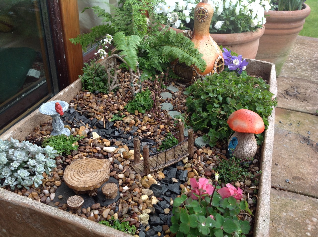 Gnome Garden: Lots Of Fabulous Fairy Garden Goodies Back In Store