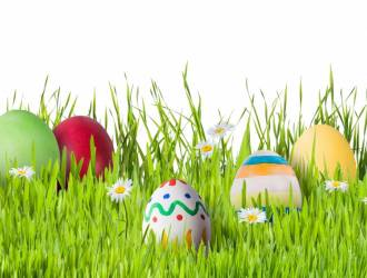 Easter Events. Book now!