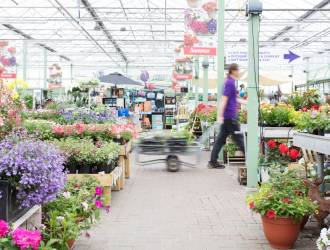 Garden Centre Assistant Job Opportunity