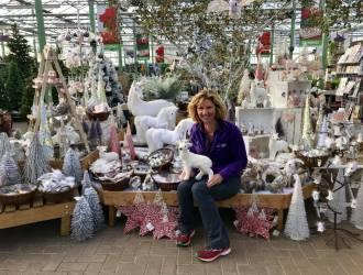 'Magical Dreams' Christmas Collection