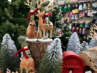'Woodland Walk' Christmas Collection