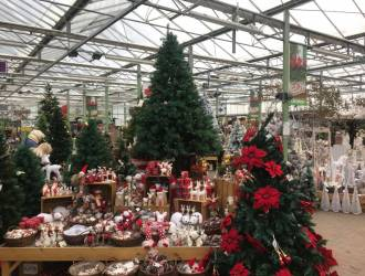 'Traditional Christmas' Collection