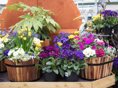 How to create beautiful containers