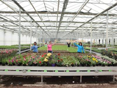 The very best plants, home grown in our nursery