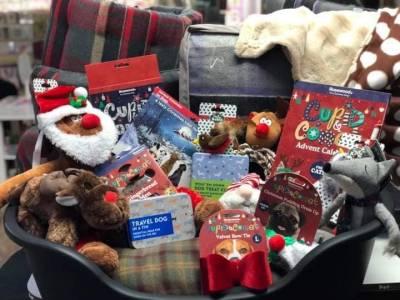 Pawfect Christmas Treats